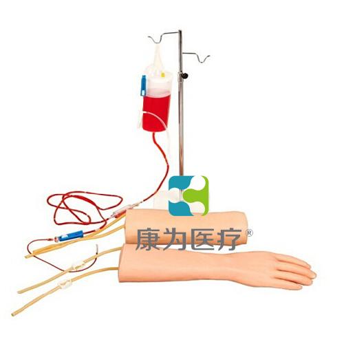 """""""康为医疗""""手部、肘部组合式静脉输液(血)训练模型"""