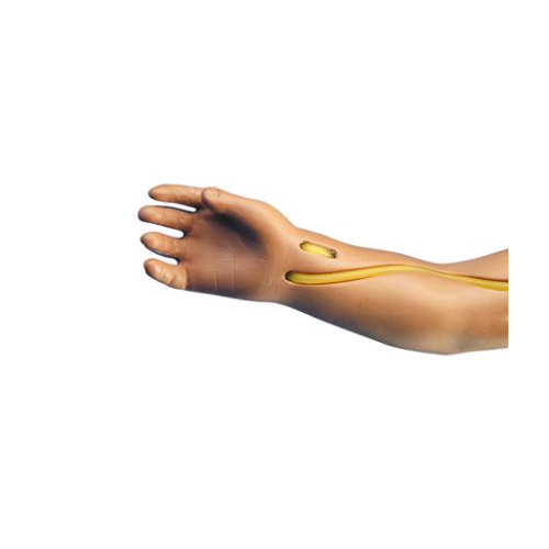 德国3B Scientific®静脉注射臂