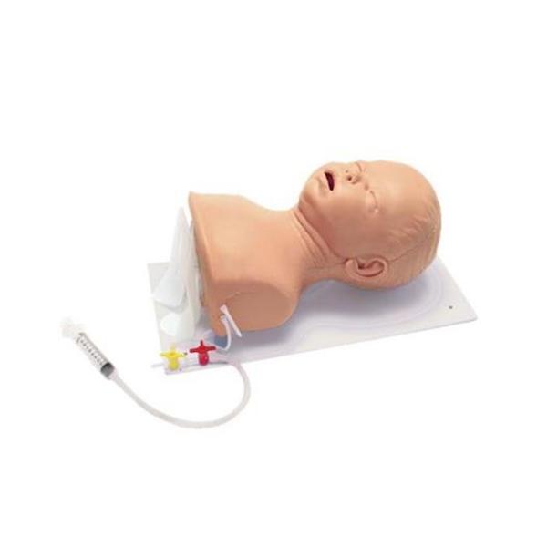 德国3B Scientific®高级婴儿插管模型,头部具有固定板