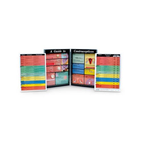 德国3B Scientific®避孕用具的展示