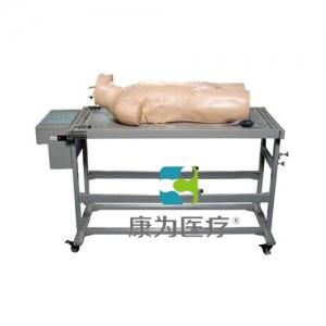 """""""康为医疗""""高级综合穿刺术与叩诊检查技能训练标准化模拟病人"""