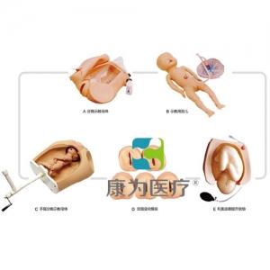 """""""康为医疗""""高级腹部触诊、分娩机转综合模型"""