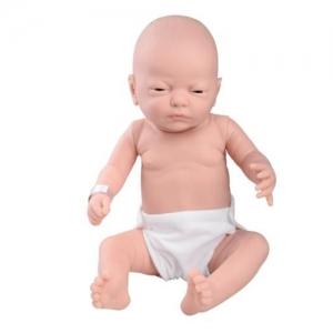 德国3B Scientific®婴儿护理模型,男