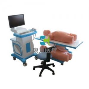 多媒体超声仿真病人模拟教学系统